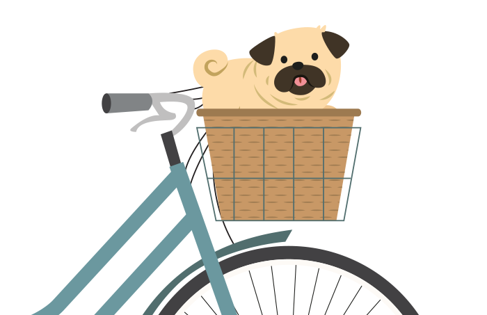 Cykelkurv & trailer