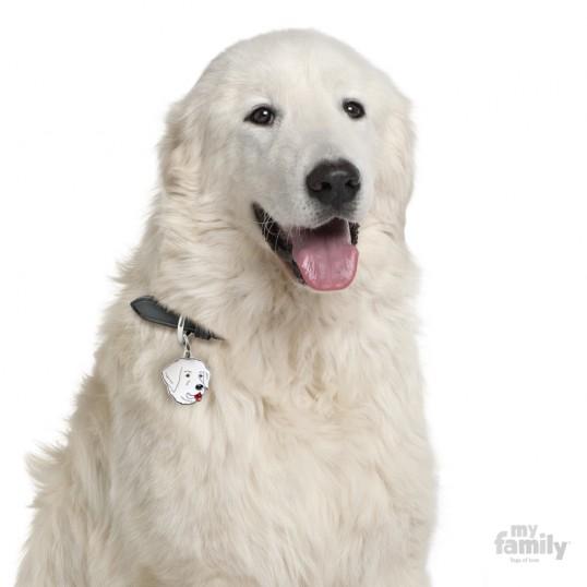 HundetegnMaremmaSheepdog-01