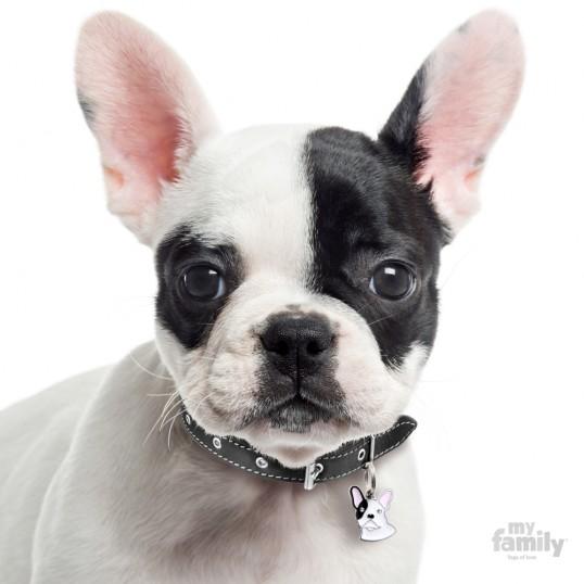 HundetegnFrenchBulldogFlerefarver-01