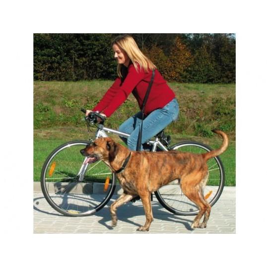 Cykel og joggingline. Motionsline