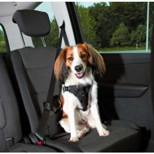 Dog Protect hundesikkerhedssele til bil