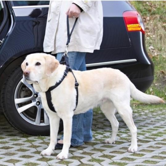ReservehndtagtilhundenssikkerhedsseleOBSdennemodelkanbrugesmedbilenssikkerhedssele-01