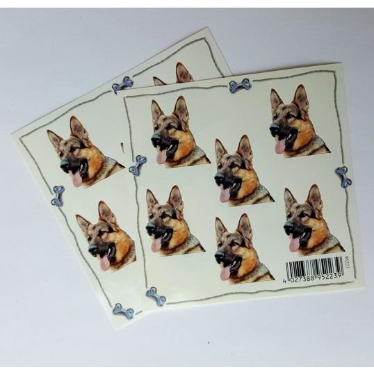 WachtelhundVlgklistermrkengleringbrocheslipsenlmm-01