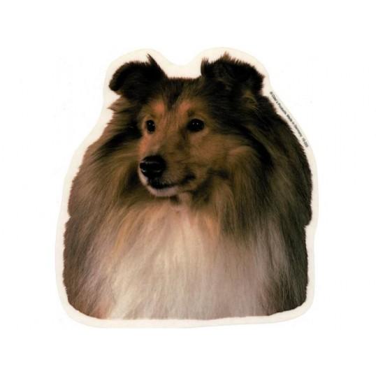 Shetland Sheepdog, hv. Vælg: klistermærke, nøglering, broche, slipsenål, mm
