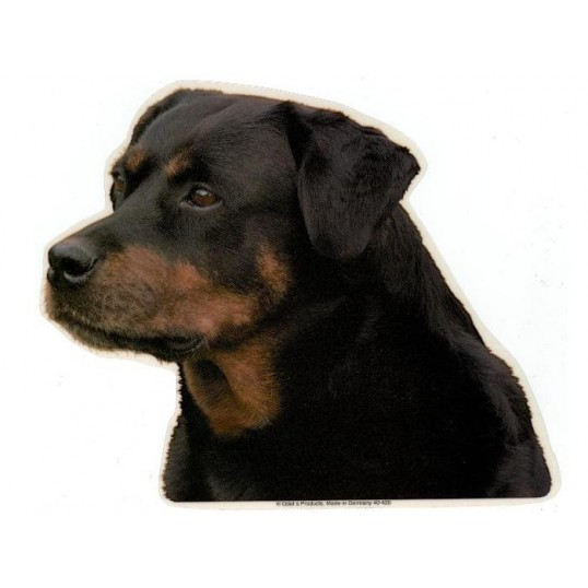 Rottweiler, tæve. Vælg: klistermærke, nøglering, broche, slipsenål, mm