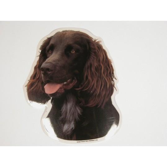 Wachtelhund. Vælg: klistermærke, nøglering, broche, slipsenål, mm