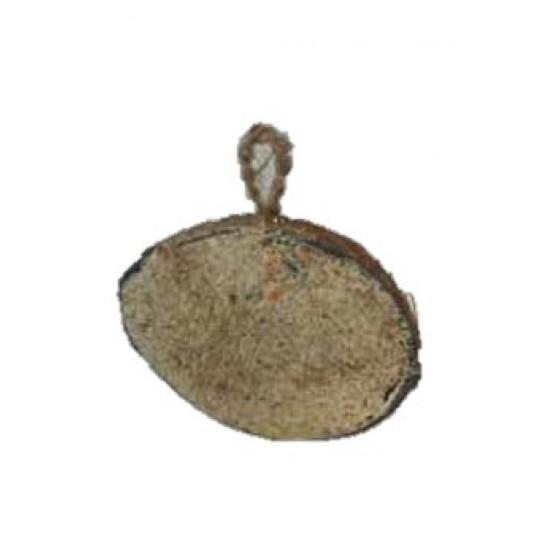 Halv kokosnød med fedt og frø.