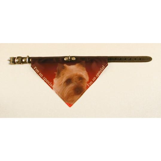 Bandana Halsbånd med motiv af Cairn Terrier