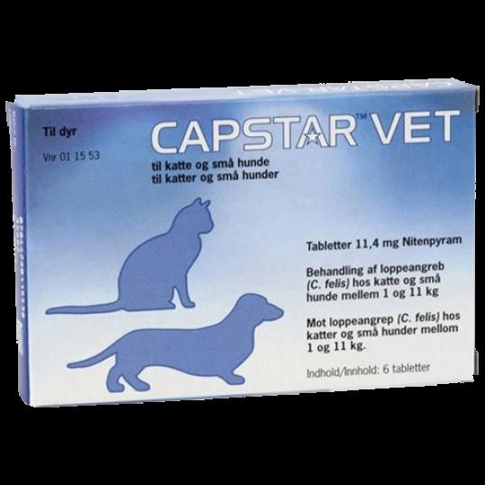CapstarVetloppemiddelKatogHund-01