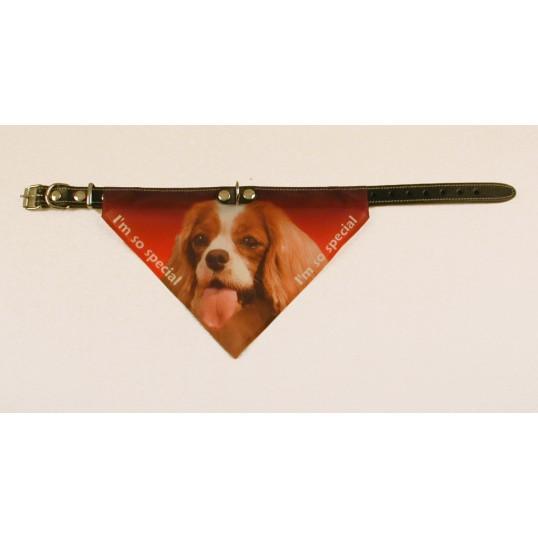 Bandana halsbånd med motiv af Cavalier King Charles Spaniel flere varianter