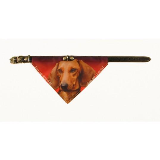 BandanaHundehalsbndmedmotivafgravhunde-01