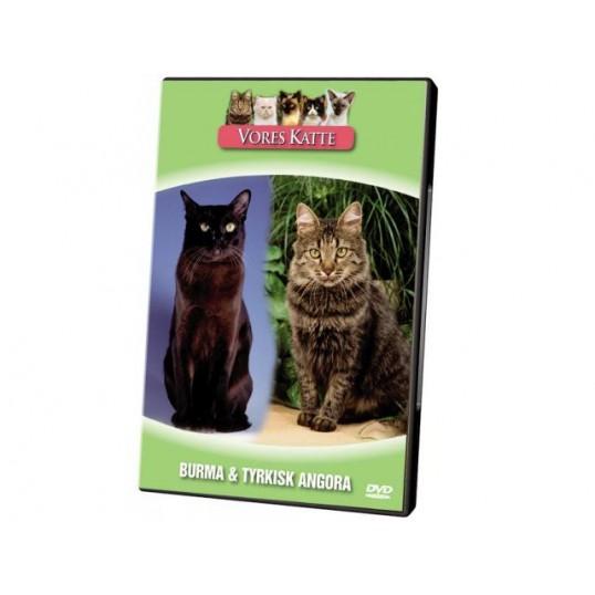 DVD495 Vores Katte. Burma & Tyrkisk Angora
