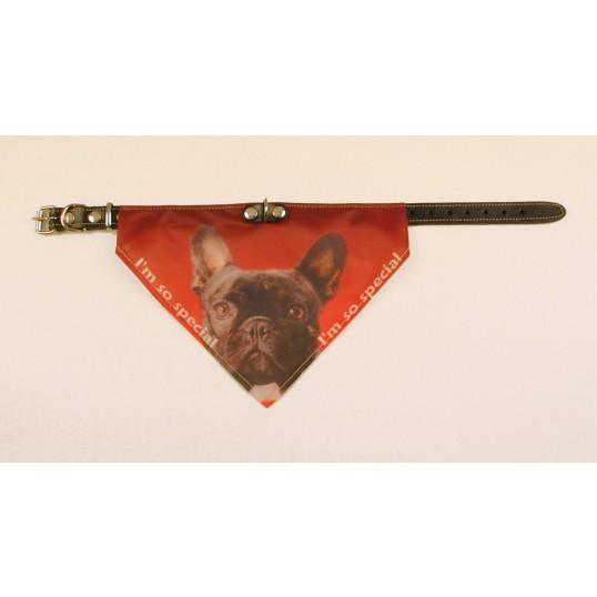 Bandana halsbånd med motiv af Fransk Bulldog.