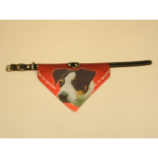 Bandana halsbånd med motiv af Jack Russell Terrier flere varianter