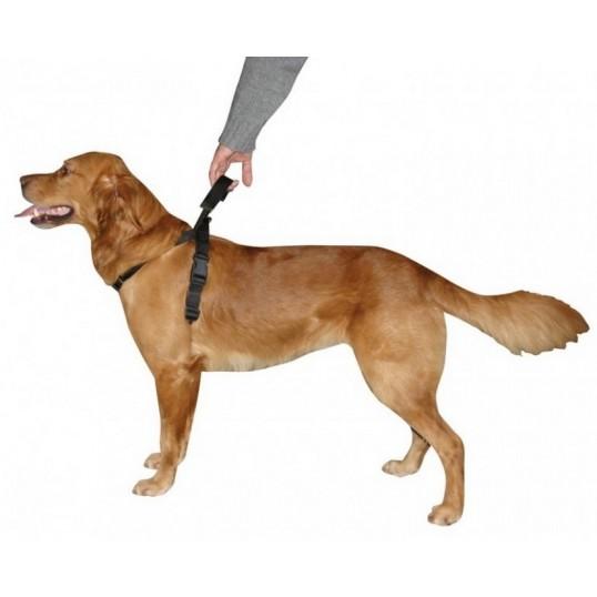 Sele med integreret håndtag, Dog Control.