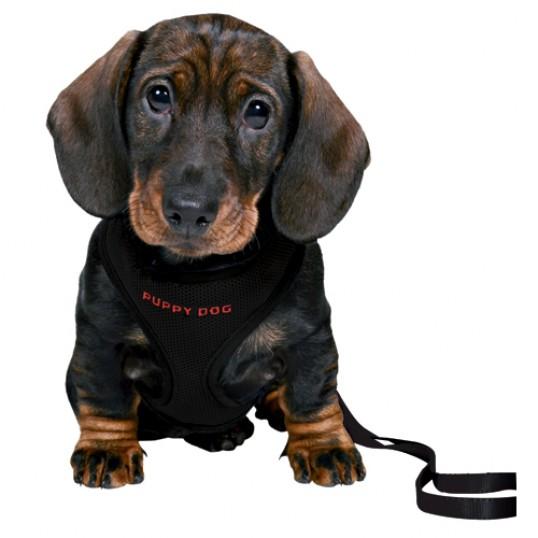 PuppyDogSofthvalpeselemedmatchendeline-01