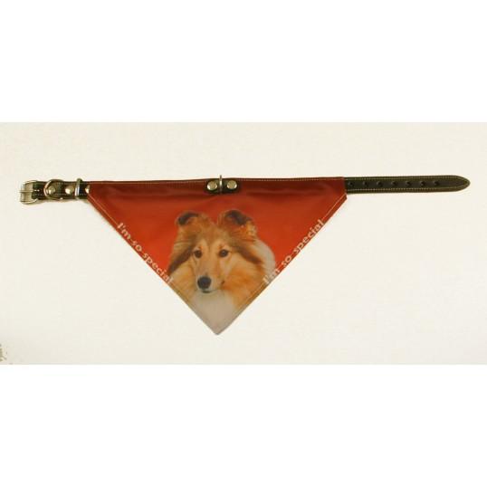 Bandana halsbånd med motiv af Shetland Sheppdog.