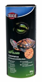 Gammarusforvandskildpadder-20
