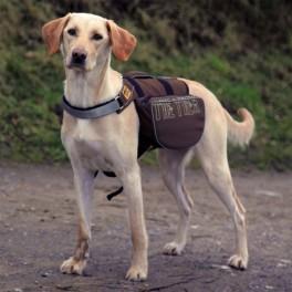 Onthetreksadeltasketilhund-20