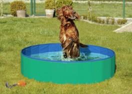 DoggyPoolHundepoolGrnBlBemrkIperiodererdenneenbestillingsvare-20
