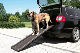 HundensrampetilbilenPetwalkfoldbarbilrampeiplast-20