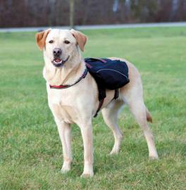 RygskSaddeltasketilhund-20