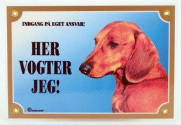 HervogterjegKorthretGravhund-20