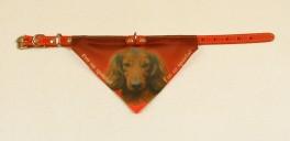 BandanaHundehalsbndmedmotivafgravhunde-20