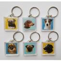 Airedale Terrier, hv. Vælg: Klistermærke, nøglering, broche, slipsenål, mm.