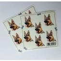 Entlebucher Sennenhund, hv. Vælg: klistermærke, nøglering, broche, slipsenål, mm