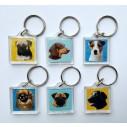 Amerikansk Staffords Terrier, gul, hv.Vælg: klistermærke, nøglering, broche, slipsenål, mm.