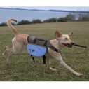 """""""On the trek"""" sadeltaske til hund."""