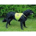 Sikkerhedsvest til hund, i neon grøn/gul med reflex.