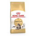 Royal Canin Maine Coon Adult. Til den voksne kat over 15 måneder