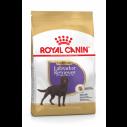 Royal Canin Labrador Retriever Sterilised Adult - Til steriliserede hunde over 15 måneder. hund. (12 kg)