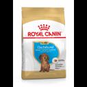 Royal Canin Dachshund / Gravhund Puppy - op til 10 måneder (1,5 kg)