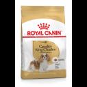 Royal Canin Cavalier King Charles Adult - over 10 måneder