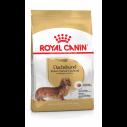 Royal Canin Dachshund / Gravhund Adult - over 10 måneder