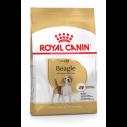Royal Canin Beagle Adult - over 10 måneder. (12kg)