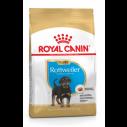 Royal Canin Rottweiler Puppy - op til 18 måneder (12kg)