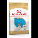 Royal Canin French / Fransk Bulldog Puppy - op til 12 måneder