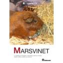Bogen: Marsvinet. Af Turbine Forlaget