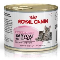 Royal Canin Babycat instinctive Mousse. Til den diegivende hunkat og hendes killinger op til 4 måneder. 1 ds á 195 g.