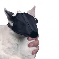 Mundkurv til kat