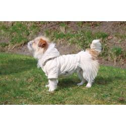 """Vichy"" cremefarvet hundefrakke"