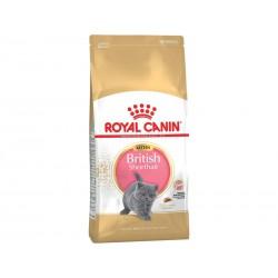 Royal Canin British Shorthair Kitten. Til killing op til 12 måneder
