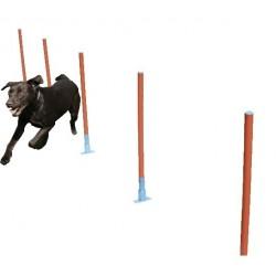 Agility Slalom