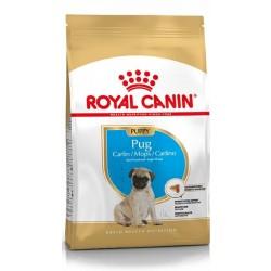Royal Canin Pug / Mops Junior - op til 10 måneder (1,5kg).