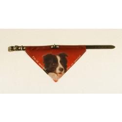 Bandana halsbånd med motiv af Border Collie.