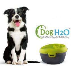 Vandfontæne til hund med filter og dentalcare sticks